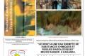 République Démocratique du Congo (RDC) : Rapport de la pollution des rivières au Katanga par Boss MIning