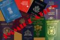 Chronique du Dr Serge-Nicolas NZI : La Diaspora ivoirienne et la nationalité du pays d'immigration