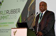 Économie : Sous la présidence de la Côte d'Ivoire, le Groupe d'Etude International sur le Caoutchouc (IRSG) en réunion à Colombo (Sri Lanka)