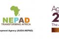 L'Agence de développement de l'Union Africaine – NEPAD (AUDA-NEPAD) a récompensé les champions de la jeunesse africaine pour #TheAfricaWeWant