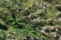 Jean-Claude DJEREKE : « Nous voulons des bergers qui rassurent et défendent le troupeau quand il est attaqué »